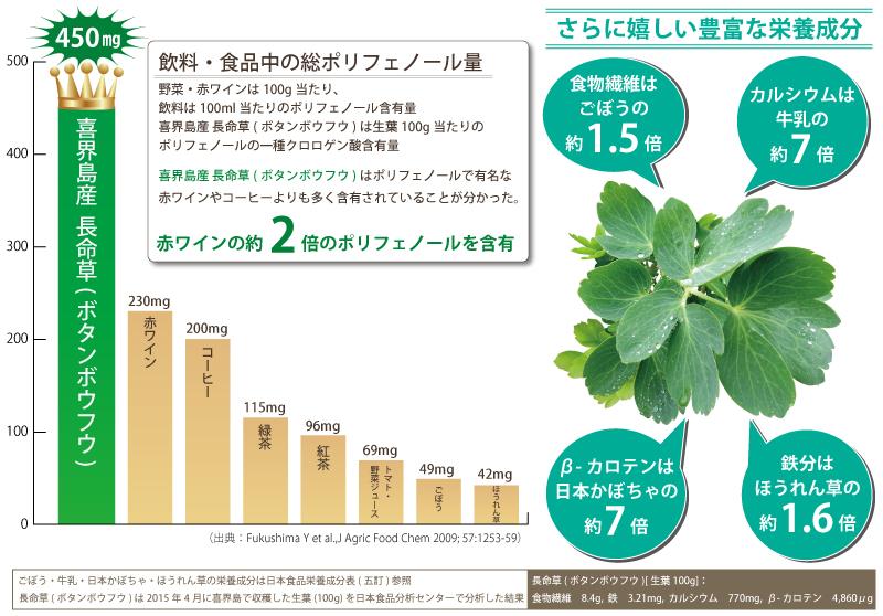 喜界島 長命草 ボタンボウフウ 栄養成分 クロロゲン酸